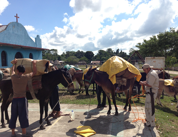 Our Mule Train to El Mirador Saddles up all of Our Belongings