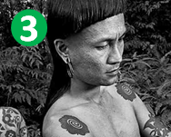 Extreme Bucket List: The Iban tribe in Borneo is known for their ruthless headhunting tactics and use tattoos hammered with bone splinters to show off their accomplishments.  I will go stay with a tribe and get a tattoo the traditional way.