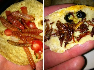 10. Grasshopper and Worm Tacos in Mexico