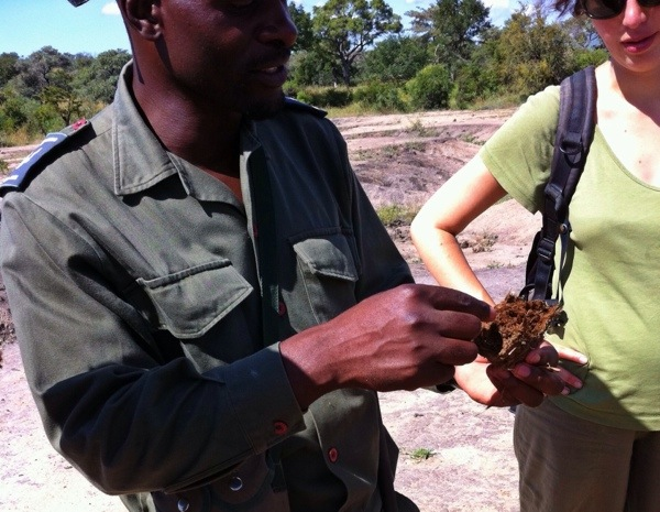 As he shows here, there is a lot you can learn about rhino poop - and it could save your life